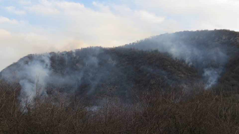 تصاویر زبانههای آتش بر دامن پارک ملی گلستان
