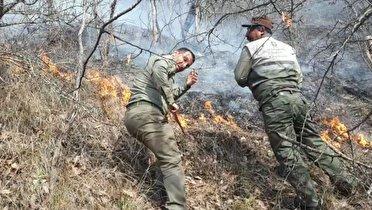 آخرین اخبار از آتش سوزی در پارک ملی گلستان
