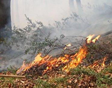 چشم ها به آسمان برای خاموش شدن آتش توسکستان